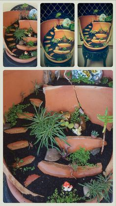 My first attempt at a broken pot  faerie garden. I had to break the pot myself. Wasn't hard..score the pot first, where you want to  break it. Lay it on and cover with an old towel or similar and bash with a hammer along the scored lines. You might not get exactly what you want but you should get something usable. Trial and error fitting them in place.