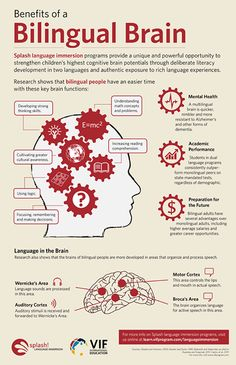 Educational infographic & data visualisation The Bilingual Brain – good reasons to learn a second language!… Infographic Description The Bilingual Brain – good reasons to learn a second language! Learning A Second Language, Learn A New Language, Speech And Language, Foreign Language, Spanish Dual Language, German Language Learning, English Language Learners, Language Study, French Language