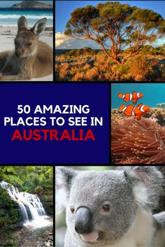 As the world's sixth largest country, Australia is full of amazing and diverse places to visit, including beautiful mountain ranges, stunning beaches, world-renowned wine regions, bustling cities, exotic rainforests, and expansive deserts.