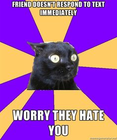 Definitely me!  #anxiety #anxietycat