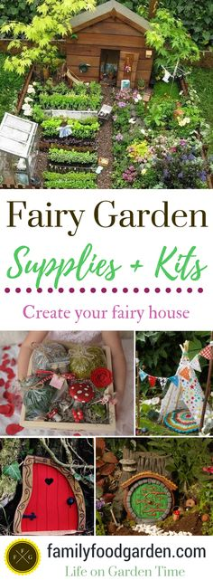 Fairy garden ideas & supplies
