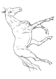 Horse Coloring Pages 3 Coloring Pages Pinterest