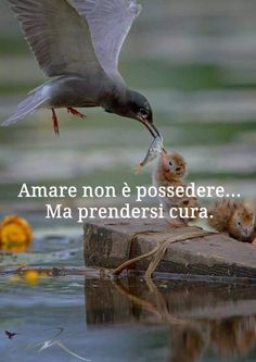 Mood Quotes, Life Quotes, Favorite Quotes, Best Quotes, Quotes About Everything, Italian Language, My Mood, Love Words, True Love