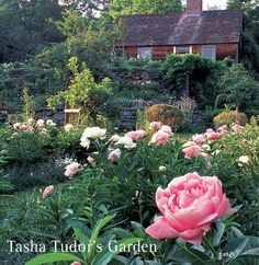 What a  beautiful garden by a remarkable woman, Tasha Tudor.