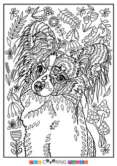 Papillon Coloring Page Dog Coloring Page, Free Adult Coloring Pages, Doodle Coloring, Coloring Book Pages, Coloring Sheets, Crayon Set, Papillon Dog, Drawings, Free Printable
