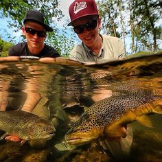 Brown and rainbow trout double on the fly from Gone Fishing, Best Fishing, Fishing Reels, Brown Trout, Rainbow Trout, Colorado Rockies, Rocky Mountains, Fresh Water, Nice