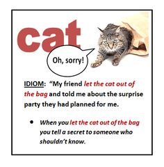 let the cat out of the bag #idioms #ELT #voc