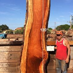 Jatoba is also known as Brazilian Cherry. We have an abundant amount of Jatoba available as it is reclaimed through our Harvesting program (Dead, Dying, and Downed trees). Wood Slab Table, Hardwood Lumber, Design Projects, Catalog, Big, Beautiful