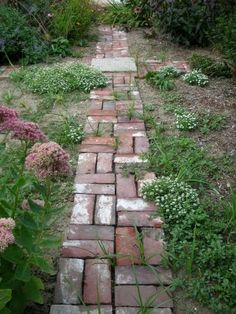 Old Chimney Bricks Walkway...in the garden...looks like my mom's!!