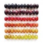 Funny pictures about Food Gradients By Brittany Wright. Oh, and cool pics about Food Gradients By Brittany Wright. Also, Food Gradients By Brittany Wright photos. Photography Projects, Food Photography, Colour Photography, Interior Photography, Product Photography, Photography Business, In Vino Veritas, Vitis Vinifera, Different Recipes