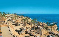 Sharks Bay #egypt #travel