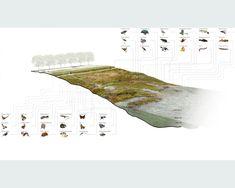 desert arroyo diagram - Google Search
