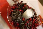 Wedding Centerpieces: For fall or winter. Cranberries and pine cones.