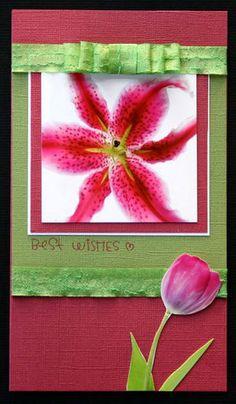 Card by Michelle Loffler using Darkroom Door Full Bloom Photochips.