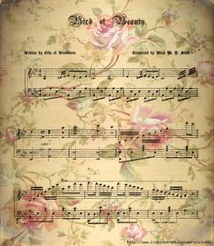 vintage music sheet and roses.