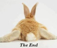 """""""The End""""...lol, I would have liked to have found this for my first pin on this board so it would be at the very end of all the Rabbit pins."""