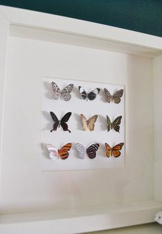 I adore this! Cut paper butterflies, bend them, and glue to shadow box. ALSO, check this site.amazing step by step tutorials for DIY. Butterfly Pictures, Butterfly Decorations, Butterfly Frame, Butterfly Artwork, Butterfly Mobile, Diy Paper, Paper Crafts, Crafts To Do, Diy Crafts