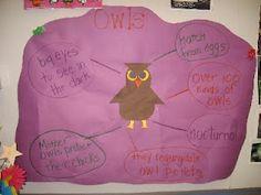 Owl Bubble Map