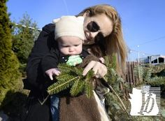 Lyz Landis of Mountville, Lancaster County, introduces her three-month-old son Beckett to a pine bough while the family purchased a tree at Strathmeyer Christmas Trees at the York Fairgrounds Monday, Nov. 26, 2012. She said her family used to sell Strathmeyer trees from a family farm and they made the trip to York to get one. Strathmeyer is participating in the national Trees for Troops program, enabling customers to purchase a tree that will be shipped to troops and their families serving…