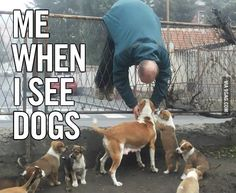 Funny pictures about That Puppy Love. Oh, and cool pics about That Puppy Love. Also, That Puppy Love photos. Funny Shit, Funny Cute, Funny Stuff, That's Hilarious, I Love Dogs, Puppy Love, Cute Dogs, Funny Dogs, Funny Animals
