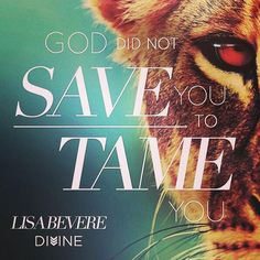 """""""God did not save you to tame you."""" -Lisa Bevere, Lioness Arising"""