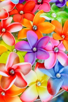 The Best Pacific and Samoa Shopping - Carvings, Crafts, Homeware and Gifts Flowers In Hair, Fabric Flowers, Samoan Women, Island Design, Pearl Hair, Popular Hairstyles, All The Colors, Color Mixing, Roots