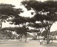 Straatbeeld, Bandung, Java, Indonesië (1933) Army Names, Dutch East Indies, Dutch Colonial, Malang, Java, First World, The Past, History, City