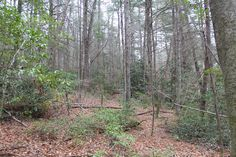 Lake view property near #cashiersnc Very buildable lot. Call Rick Creel at 828-506-0011. Hattler Properties. #mountainland #highlands #cashiersnc