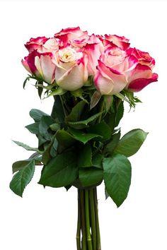 Send Online Cake, Flowers Gifts on Birthday to Pakistan  #Flowers #Bouquet #Gifts #BirthdayGifts #Cakes #OnlineGifts #SendGifts