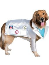 Vet Doctor Dog Costume Party City Dog Costumes Home Halloween