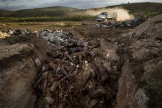 Haiti Earthquake Death Statistics | Haiti Earthquake Death Toll