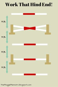 Bounce grid with ground poles, small vertical, and crossrail | themaggiememoirs.blogspot.com