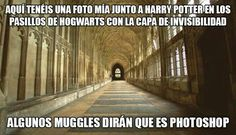 Me veis? La Saga Harry Potter, Mundo Harry Potter, Harry Potter Jokes, Harry Potter Universal, Harry Potter Fandom, Hogwarts, Slytherin, Funny Spanish Memes, Funny Jokes