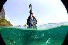 Ko Phi Phi, a ilha das ilhas! Tropical, Kos, Wanderlust, Beach Travel, Summer, Island, The Beach, Summer Time, Summer Recipes
