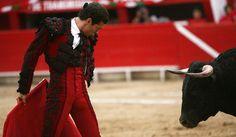 matador08.jpg (712×414)