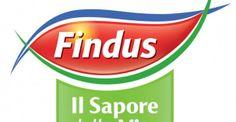 Findus: il primo spot gay -