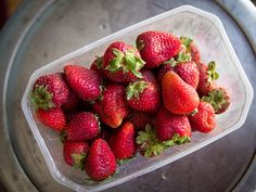 How to stop Berries from Turning Mouldy and Soft in the Fridge - WellPreserved.ca