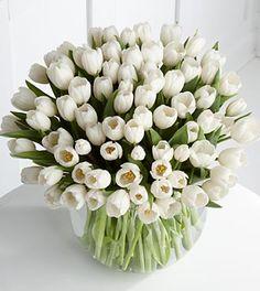 white tulips in vase My Flower, Fresh Flowers, Beautiful Flowers, White Tulips, White Flowers, White Roses, Arte Floral, Floral Arrangements, Flower Arrangement