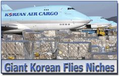 Giant Korean Flies NIche Markets