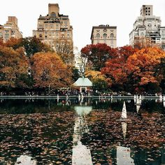 New York, you've got this autumn thing down. #regram @benfwagner