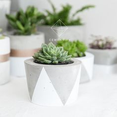 Cementify design and handcraft concrete planters, home decor in Sydney Australia. We produce minimalist products with clean, simple, monochrome and geometric style for succulent lovers and homewares enthusiast. Concrete Cement, Concrete Crafts, Concrete Design, Concrete Planters, Planter Pots, Window Sill, Handmade Decorations, Diy And Crafts, Simple