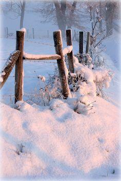 Quand la beauté du paysage dépasse les - - du thermomètre ! L'envie de faire corps avec la nature est plus forte que tout ! Winter Day, I Love Winter, Winter Magic, Winter Season, Snowy Day, Winter Christmas, Christmas Garden, Winter White, Snow Fence