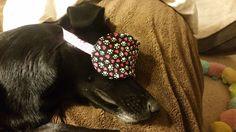 Sleeping Eye Mask, Eye mask, blindfold, Mother's Day gift, Dog lover gift, Fabric eye mask, Fabric sleeping mask, Eye Pillow by SewPinkDragon on Etsy https://www.etsy.com/listing/288749857/sleeping-eye-mask-eye-mask-blindfold