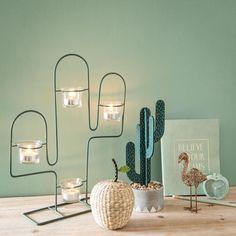 Catálogo Maisons du Monde Green Adict 2018 cactus chico