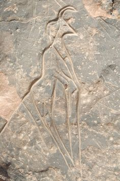 rock art of the Wadi Mathendoush (in the Libyan Sahara), which was created almost ten thousand years ago.
