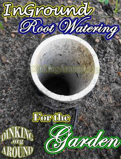 EASY Root Watering, for those hot stretches! Just Cheap PVC! Great Site with TONS of Ideas and Good Reads. Check out their photo gallery below, too!