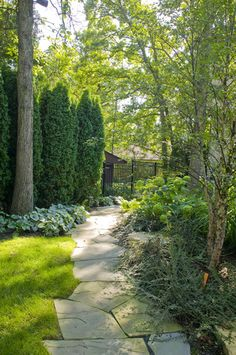 Privacy Wall Backyard Design, Pictures, Remodel, Decor and Ideas - page 3 tall evergreens