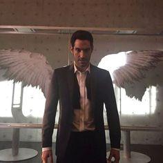 Lucifer with his wings Lucifer Wings, Tom Ellis Lucifer, Morning Star, Angels And Demons, Favorite Tv Shows, Memes, Devil, Supernatural, Handsome