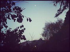 Last moon november  ..☄ @ICphotos