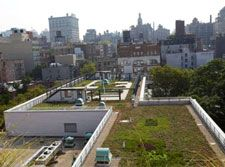 The GELL Project at P.S. 41, which is now home to New York City's largest green roof on a public school, won an EBie award on June 9 at the Urban Green Council's Third Annual Award Ceremony. (http://livingarchitecturemonitor.com/index.php/news/allnews/393-nyc-s-green-roof-environmental-literacy-laboratory-wins-award) | #green #roof #greenroof #nyc #environmental #literacy #laboratory #lab #ebie #award